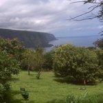 Orchard view toward Waipio Valley, the black sand beach and Maui