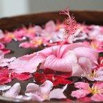 Tropical Flower Decoration