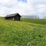 Sciliar, meadow and the hut