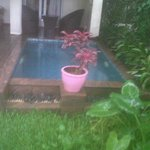 Plunge pool an experience to have