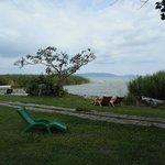 view on Balaton