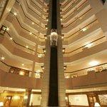Atrium & Capsule Lift