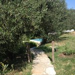Photo of Slow Life Umbria - Relais de charme
