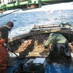 pescatori a lavoro