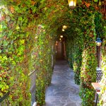 Passageway to restaurant