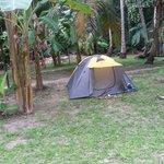Zona de Camping finca don pedro