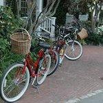 Wonderful Cruising Bikes to Rent at Hotel
