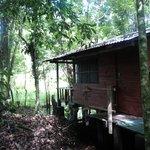 The private cabin