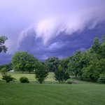 Storm looming over the back yard