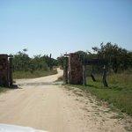 Primer ingreso a Tamboti