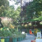 Rylstone Gardens Tea Room, Popham Road, Shanklin