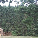 Yurt at Walcott