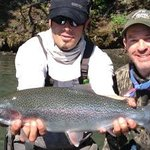 Big Rainbow Trout