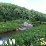 Spruce, WV