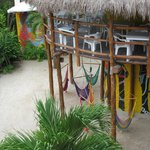 Tribu Hostel