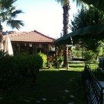 restaurant  & garden area