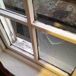 Broken window repair ?!?!