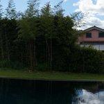 Foto di L 'Anello Del Lago