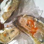 Oysters !!! Add Lemon salt and hot sauce