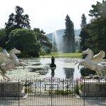 Wicklow Gardens at Powerscourt