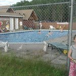 pine tree lodge swimming pool and grounds ,, they are awsome also.