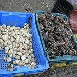 mariscos en el mercado