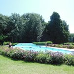 The gorgeous pool area