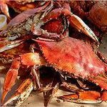 Maryland Crabs are available in season, just call for sizes!