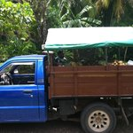 Fruit truck rolling into Encatada