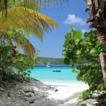 White Bay Beach Guana Island