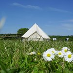 One of our four bell tents