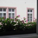 Hotel Goldene Rose Foto