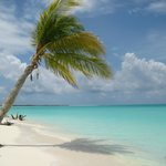 one of the destination beaches you need to bus to