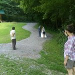 The walking trail (with the wedding party) at Butterfly Hollow