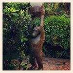 Quirky naked monkey holding light globe.