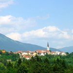 View of Radovljica from across the valley