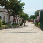 Foto de Camping Playa y Fiesta