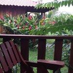Foto de Cielo Azul Resort
