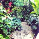 Stunning paradise