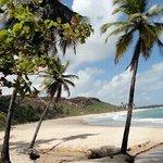 praia do coqueirinho, exuberante.