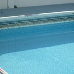Black Mildew all around the liner of the pool-broken coping around the pool