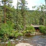 A glimpse of the cabin