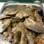 Want FRESH oysters...WE GOT 'EM