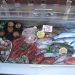 Display case with fish