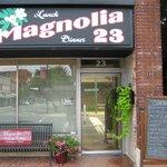 Magnolia 23