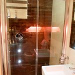 Room 101. Rainforest shower with cellulite enhancing spotlights!