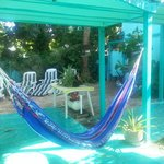 Relax on the hammock or beach chairs, nice shade!