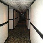 drab corridors