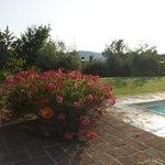 Foto de Borgo Villa Risi