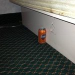 Under our bed!  A soda can full of cigarette butts in the non smoking room!  Thank you room serv